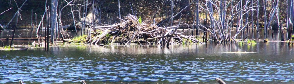 Groton Conservation Trust